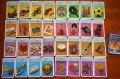 旧東ドイツ時代のカードゲーム「子供の世界」