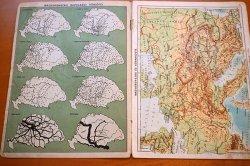 画像3: ブダペスト土産の古い世界地図ブックレット